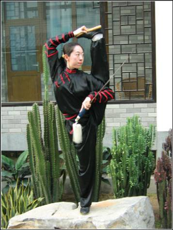 initiation wushu à toulouse (photo maitresse Fu Yang)