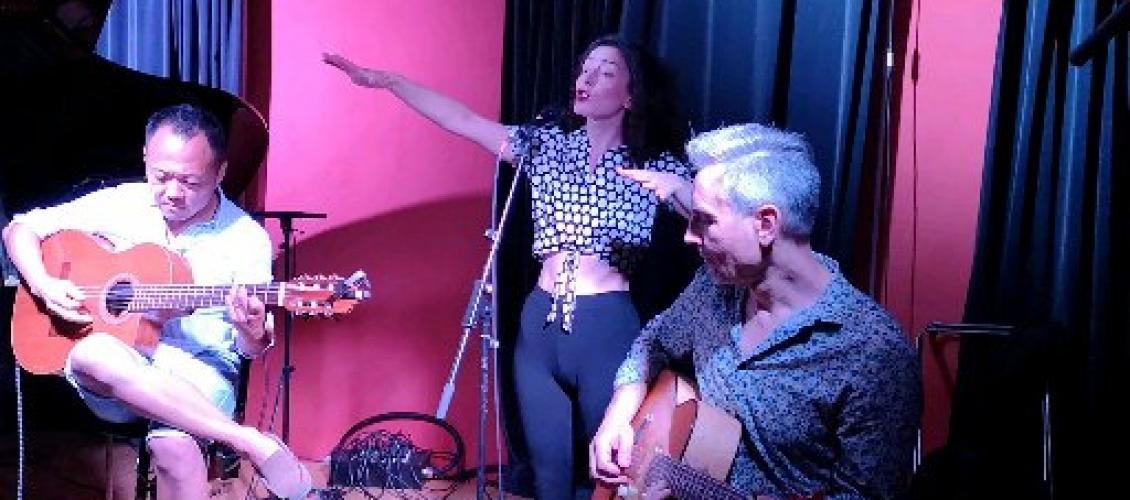 Repas / Concert à Vienne au Bar à vin La Baracarolle