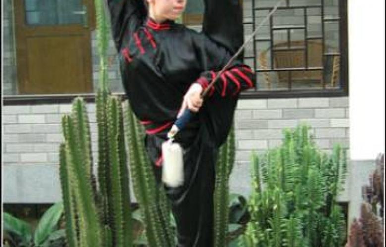 Samedi 31 mars 2012, à Toulouse : Initiation au Wushu puis dîner ANNULÉS