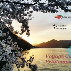 ANNULÉ – Voyage au printemps 2020 en Corée du Sud